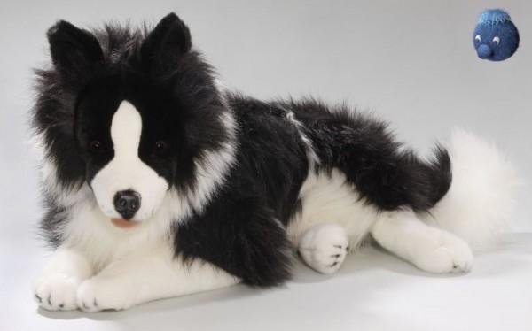 Plüsch Border Collie liegend ca. 60 cm ★ Plüschhund / Plüsch Hund