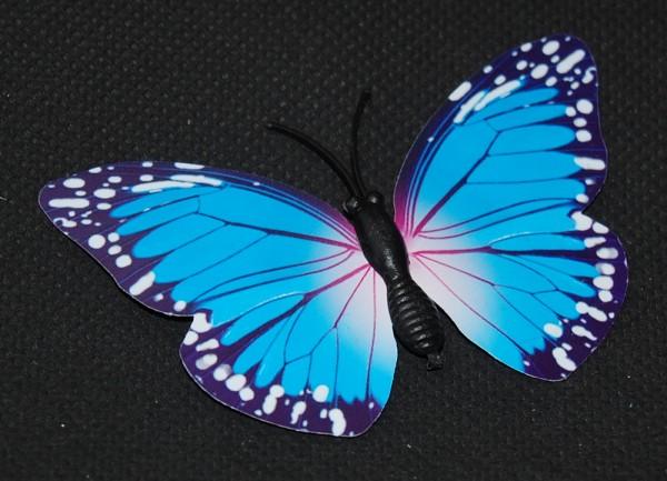 Magnet Schmetterling blau 70x45 mm - BFBL0023