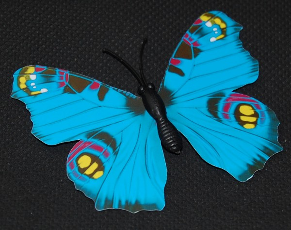 Magnet Schmetterling blau 70x55 mm