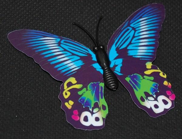 Magnet Schmetterling blau 70x55 mm - BFBL0022