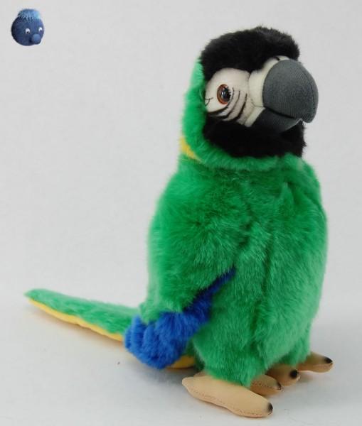 Papagei aus Plüsch, grün ★ Plüsch Papagei 25cm