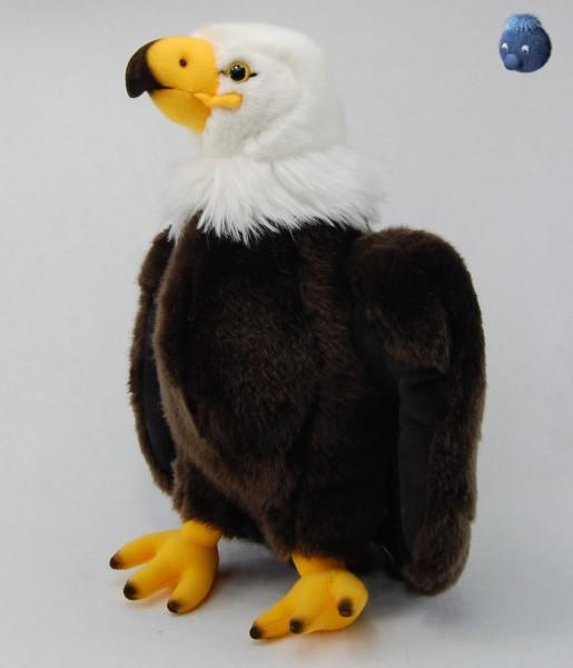 Braun Weißer Seeadler aus Plüsch ★ Plüsch Adler 30 cm