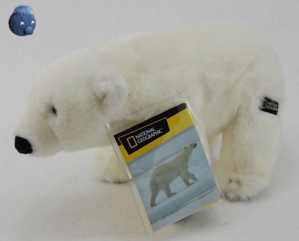 Eisbär ★ National Geographic Plüscheisbär 25 cm