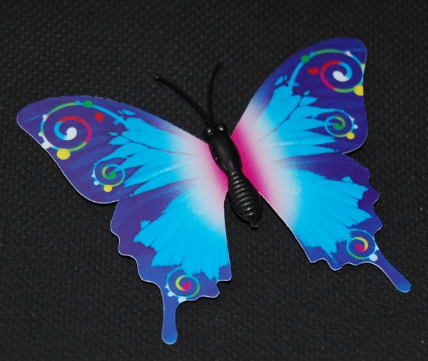 Magnet Schmetterling blau 70x50 mm - BFBL0020