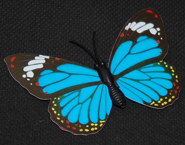 Magnet Schmetterling blau 70x50 mm