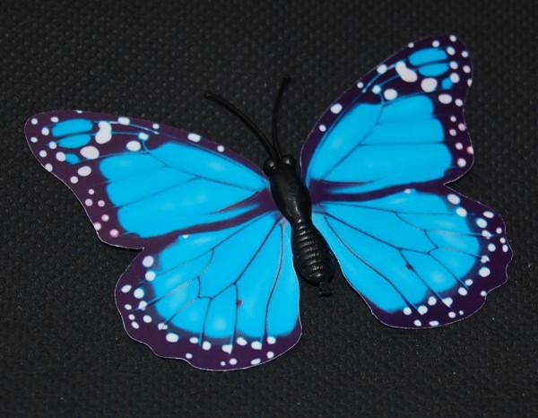 Magnet Schmetterling blau 70x50 mm - BFBL0019
